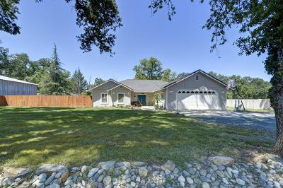 Oregon House, Dobbins Single Family Home For Sale: 13344 Rices Crossing Road