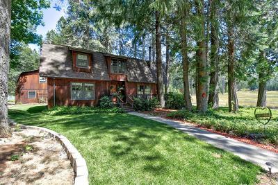Yuba County Single Family Home For Sale: 9856 Sills Lane