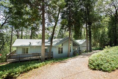 Yuba County Single Family Home For Sale: 13839 Shirley Drive