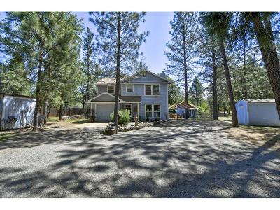 Yuba County Single Family Home For Sale: 14875 Winther Way