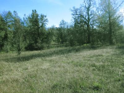Oregon House, Dobbins Residential Lots & Land For Sale: Phoenix Avenue