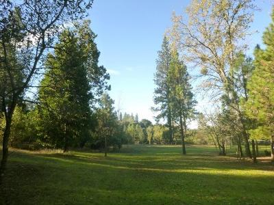 Oregon House, Dobbins Residential Lots & Land For Sale: 9516 Marysville Road