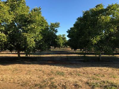 Yuba City Residential Lots & Land Pending Bring Backup: Railroad Avenue