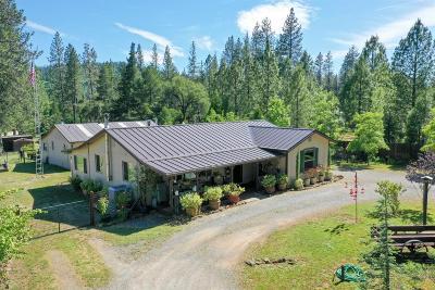 Yuba County Single Family Home For Sale: 8532 La Porte Road
