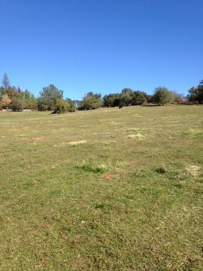 Loma Rica Residential Lots & Land For Sale: 12660 Krosens Road #12682