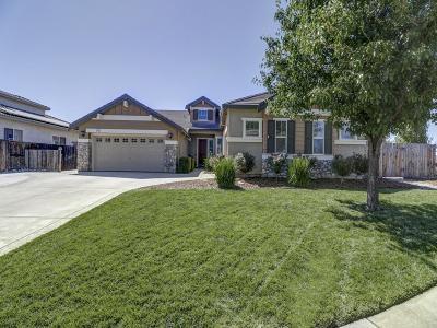 Yuba County Single Family Home For Sale: 1332 Snowy Egret Street