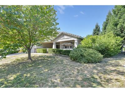 Sutter County Single Family Home For Sale: 1910 Big Oaks Court