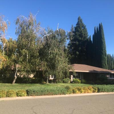 Yuba City Single Family Home For Sale: 548 Manzanita Way