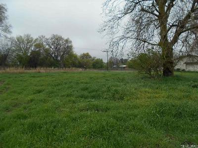 Corning Residential Lots & Land For Sale: 23065 Solano Road