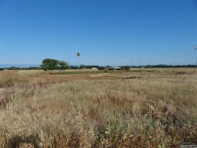 Los Molinos Residential Lots & Land For Sale: 10670 Shasta Blvd.
