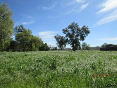Los Molinos Residential Lots & Land For Sale: Josie Street