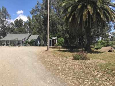 Corning Farm & Ranch For Sale: 22210 O Avenue