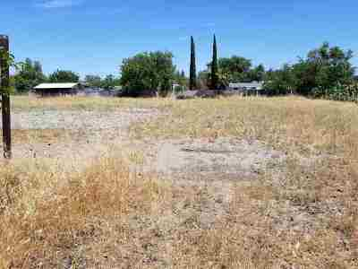 Orland Residential Lots & Land For Sale: Railroad Avenue
