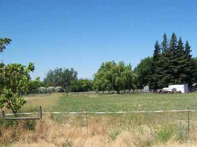 Los Molinos Residential Lots & Land For Sale: 8545 Buena Vista Avenue