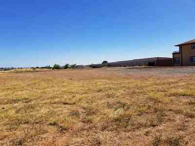 Red Bluff Residential Lots & Land For Sale: 375 Kimball Road