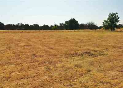 Los Molinos Residential Lots & Land For Sale: Buena Vista Avenue