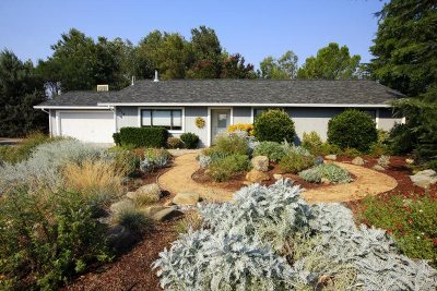 Cottonwood Single Family Home For Sale: 3216 Denice Way
