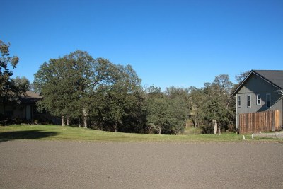 Cottonwood Residential Lots & Land For Sale: 21852 Chimney Rock Drive