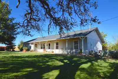 Corning Single Family Home For Sale: 18476 Paskenta Road
