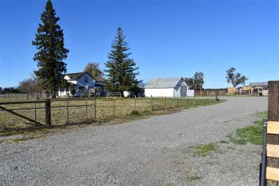 Orland Farm & Ranch For Sale: 6320 County Rd 20