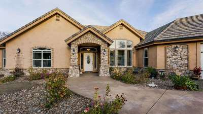 Red Bluff Single Family Home For Sale: 16200 Skyline Drive