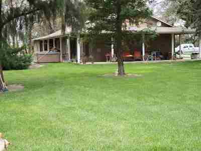 Orland Farm & Ranch For Sale: 7421 Cutting Avenue