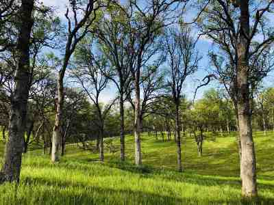 Red Bluff Residential Lots & Land For Sale: Manter Court
