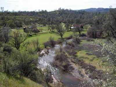Shasta County Farm & Ranch For Sale: 3833 Selvester Ranch Road
