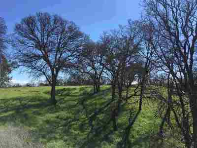 Red Bluff Residential Lots & Land For Sale: Woodlake Circle
