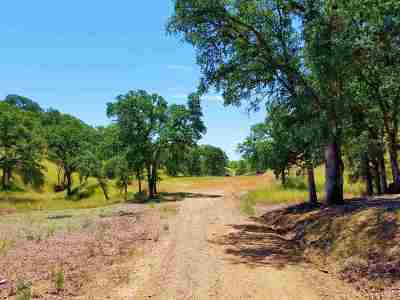 Red Bluff Residential Lots & Land For Sale: 14573 Molluc Drive