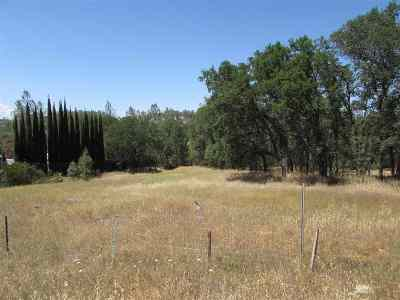 Corning Residential Lots & Land For Sale: 15820 Rancho Tehama Rd.
