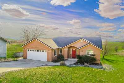 Cottonwood Single Family Home For Sale: 22785 Riverview Drive