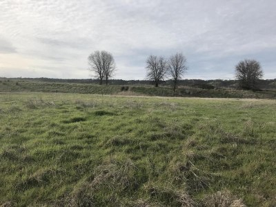 Cottonwood Residential Lots & Land For Sale: 22806 Rio Alto Drive