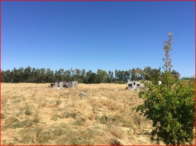 Gerber Residential Lots & Land For Sale: 22280 Dove Avenue