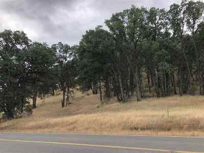 Corning Residential Lots & Land For Sale: 17235 Rancho Tehama Rd.