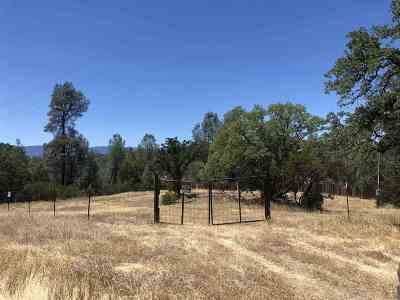 Corning Residential Lots & Land For Sale: 15900 Rancho Tehama Rd.