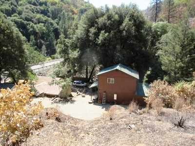 Shasta County Single Family Home For Sale: 10400 Highway 299