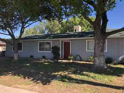 Corning Single Family Home For Sale: 1031 Marguerite Avenue