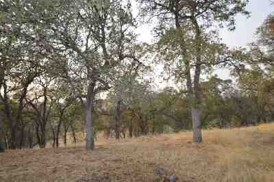 Red Bluff Residential Lots & Land For Sale: 14470 Monte Vista Court