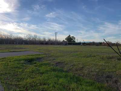 Orland Residential Lots & Land For Sale: 6722 County Rd 21