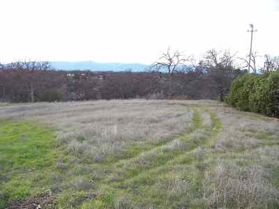 Corning Residential Lots & Land For Sale: 17145 Hillcrest Drive