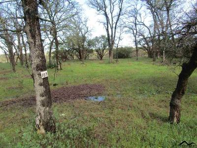 Corning Residential Lots & Land For Sale: 16300 Rancho Tehama Rd.