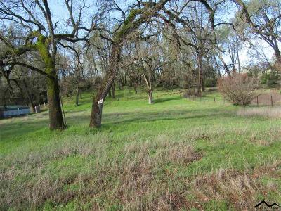 Corning Residential Lots & Land For Sale: 15993 Tulare Bend