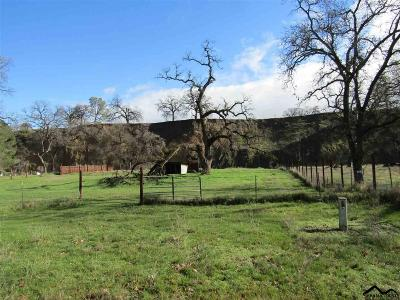 Corning Residential Lots & Land For Sale: 15958 Tulare Bend