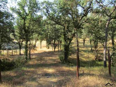 Corning Residential Lots & Land For Sale: 16467 Stagecoach Road