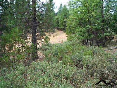 Red Bluff Residential Lots & Land For Sale: Raglin Ridge Road