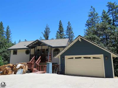 Sonora Single Family Home For Sale: 24033 S Bear Clover