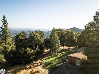Sonora Single Family Home For Sale: 14011 Northridge Road