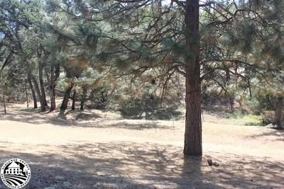 Groveland Residential Lots & Land For Sale: 4-343b Big Foot Circle