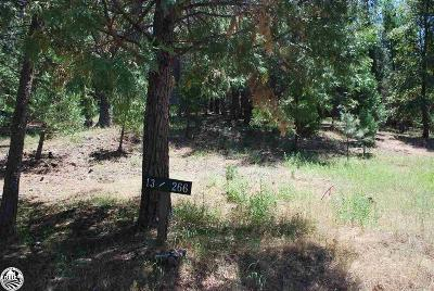 Groveland Residential Lots & Land For Sale: U13/L266 Pine Mountain Lake Drive